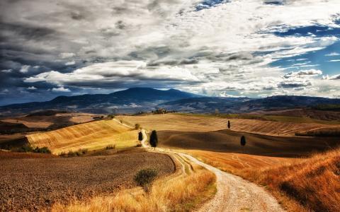 意大利,托斯卡纳,字段,路径