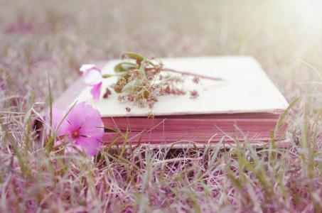 书,草,花