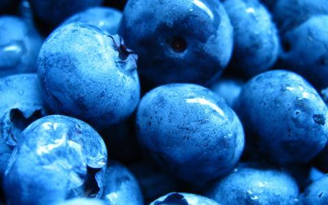 蓝莓,浆果,滴