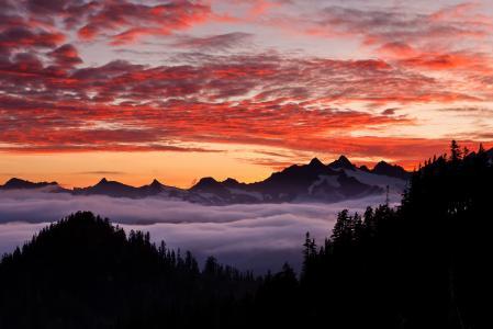 山区国家,森林,奥尔根,我们,山脉