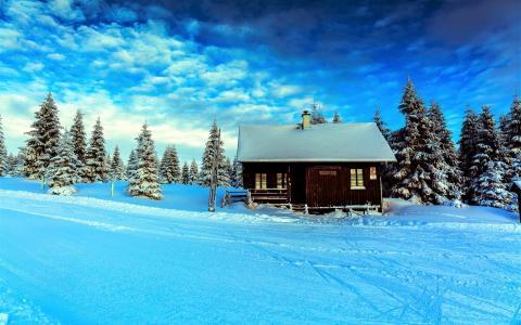 冬天,家,木头