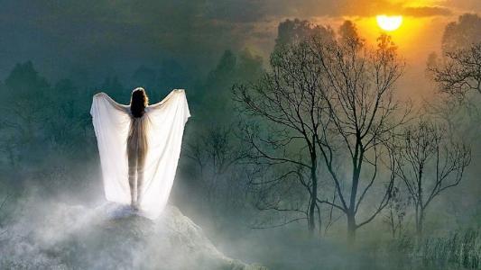 出生,天使,在,早上,冬天,雾