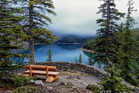 冰Lake湖,班夫国家公园,湖泊,树木,冷杉,长凳,景观
