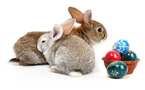 兔子,鸡蛋,krashenki
