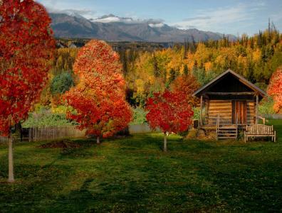 秋天,山,森林,疯,房子,景观