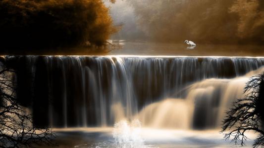 秋天,景观,壁纸