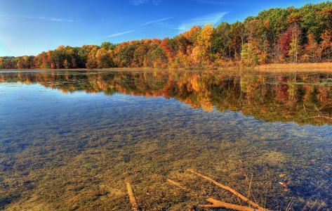 性质,河,透明度,秋季