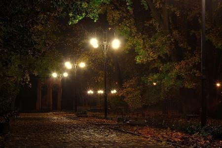 秋天,晚上,街头