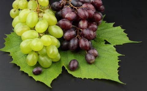 叶子,葡萄,水果,酒