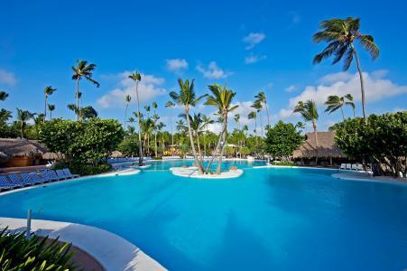 棕榈树,平房,游泳池,棕榈树,外部,游泳池