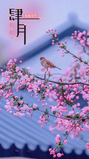四月你好,春暖花开