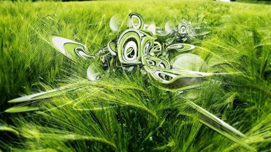 3D,小麦,壁纸