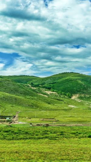 草原护眼美丽风景