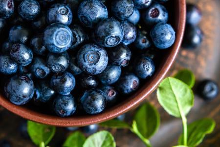 蓝莓,新鲜,浆果,浆果,蓝莓,蓝莓,碗