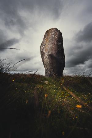 矗立在绿地上的岩石