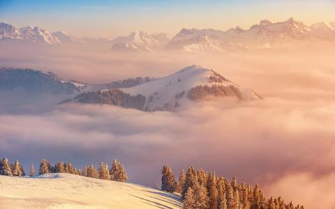 高峰,景观,山,瑞士,云