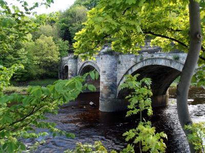 桥,河,树,景观