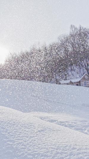 纷飞的迷人大雪