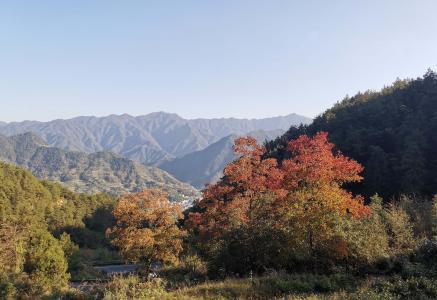 秋日山峰迷人风光