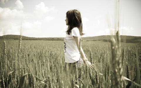 女孩,性质,小麦,黑麦