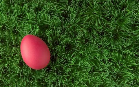 草,复活节彩蛋