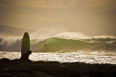 冲浪,波浪,沙滩,板,海洋