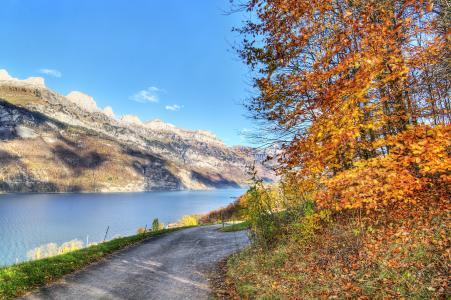 秋天,路,山,河,景观