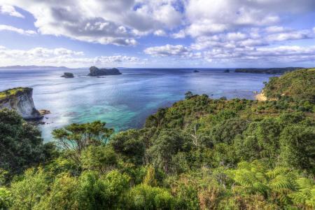 科罗曼德半岛,新西兰,пейзаж
