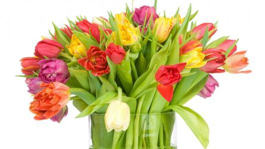 花束,郁金香,花瓶