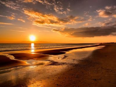 海滩,海洋,阳光