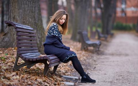 落叶,深秋,公园