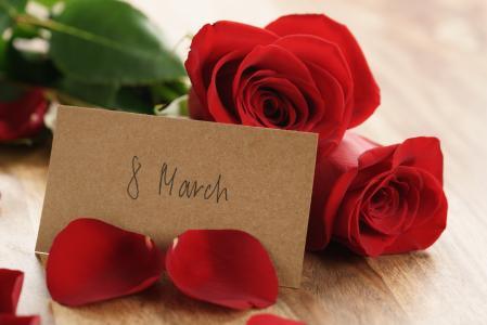 红玫瑰,玫瑰,花瓣,3月8日,浪漫,礼物,花束,红色