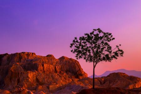 黄昏下的树和山