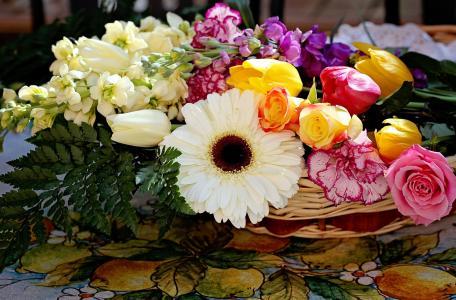 玫瑰,康乃馨,非洲菊,郁金香