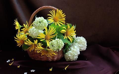 织物,篮子,花束,绣球花,花瓣,肉桂,鲜花