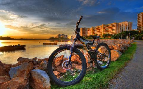 城市,自行车,壁纸