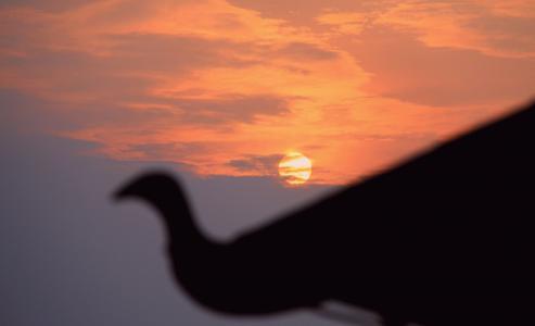 夕阳西下唯美浪漫景色