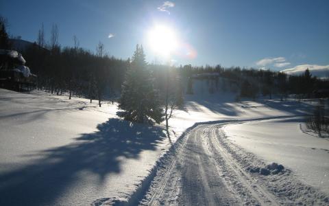 路,雪,天空,树木,房屋