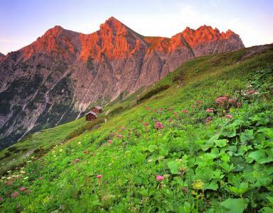 奥地利,Brandnertal,山,小房子,景观