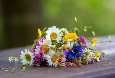 野花,朴实无华