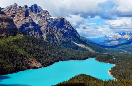 山,湖,森林,空间