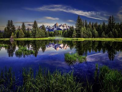 海狸池塘,大提顿国家公园,怀俄明州,落基山脉,大提顿,怀俄明州,落基山脉,湖,反射,森林,山