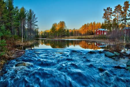 河流,森林,溪流,房屋,红色