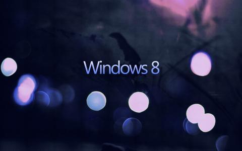 窗户8,极简主义,黄蜂
