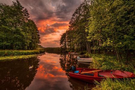 河,船,森林,日落,景观