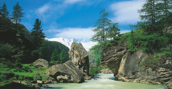 Nationalpark Hohe Tauern,河流,岩石,树木,桥梁,景观