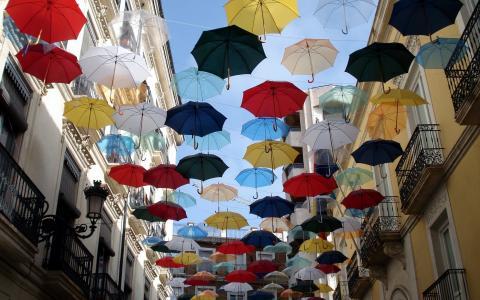 的,伞,壁纸