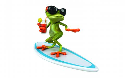 青蛙,冲浪,,壁纸