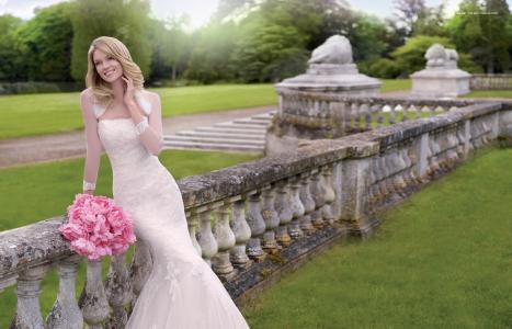 Lindsay Ellingson,模特,新娘,微笑,假期,婚礼,礼服,鲜花,性质