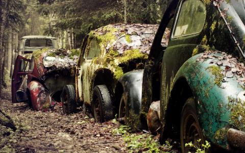 汽车,损坏,壁纸